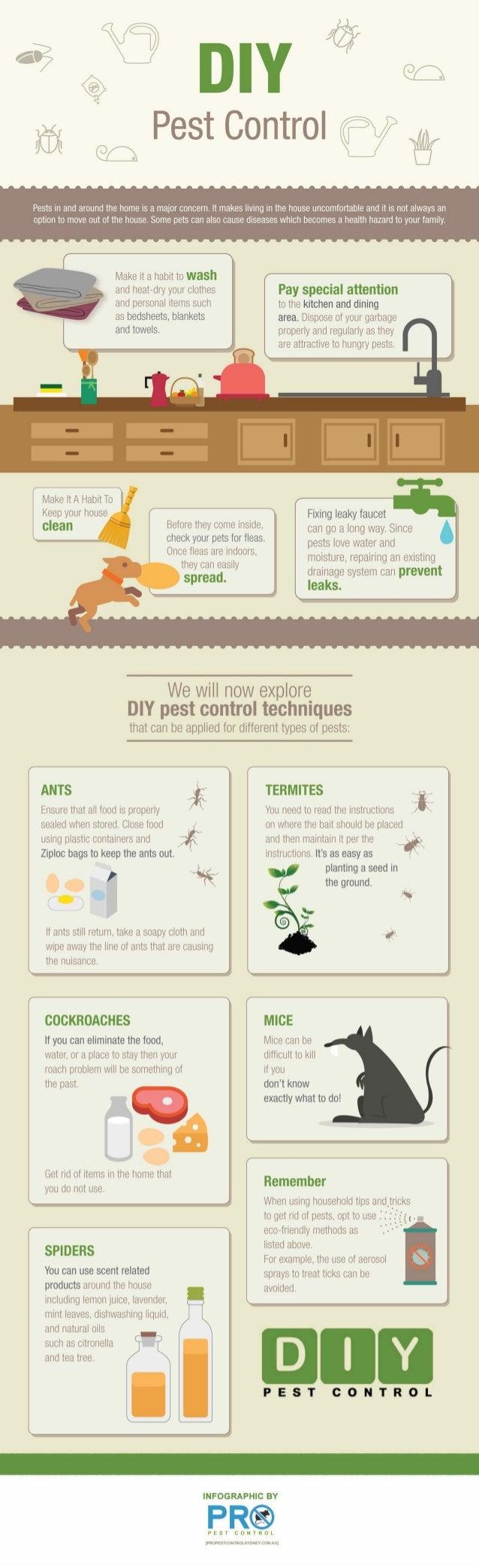 DIY Pest Control Infographic