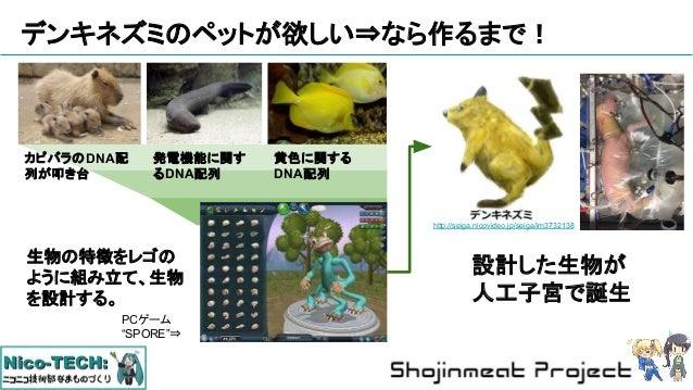 デンキネズミのペットが欲しい⇒なら作るまで! カピバラのDNA配 列が叩き台 発電機能に関す るDNA配列 黄色に関する DNA配列 生物の特徴をレゴの ように組み立て、生物 を設計する。 http://seiga.nicovideo.jp/s...