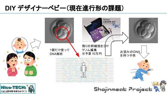 DIY デザイナーベビー(現在進行形の課題) 残りの幹細胞をDIY ゲノム編集 ※予算10万円 1個だけ使って DNA解析 お望みのDNA を持つ子供