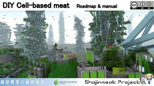DIY Cell-based meat Roadmap & manual