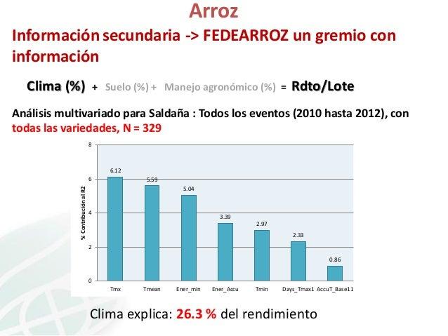 Arroz Información secundaria -> FEDEARROZ un gremio con información Clima (%)  + Suelo (%) + Manejo agronómico (%) =  Rdto...