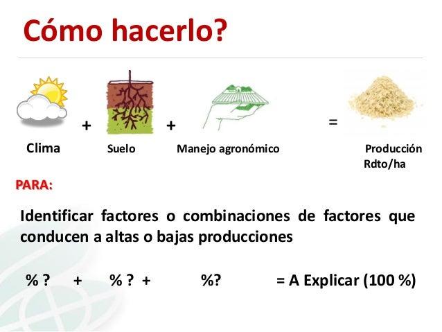 Cómo hacerlo? + Clima  =  + Suelo  Manejo agronómico  Producción Rdto/ha  PARA:  Identificar factores o combinaciones de f...
