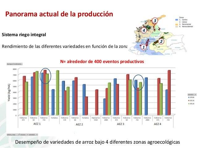 Panorama actual de la producción Sistema riego integral Rendimiento de las diferentes variedades en función de la zona N= ...