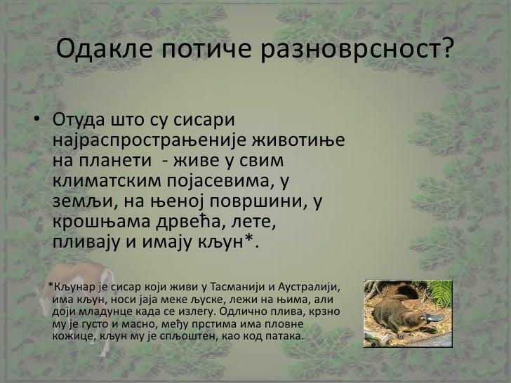 Raznovrsnost sisara, VI razred Slide 2