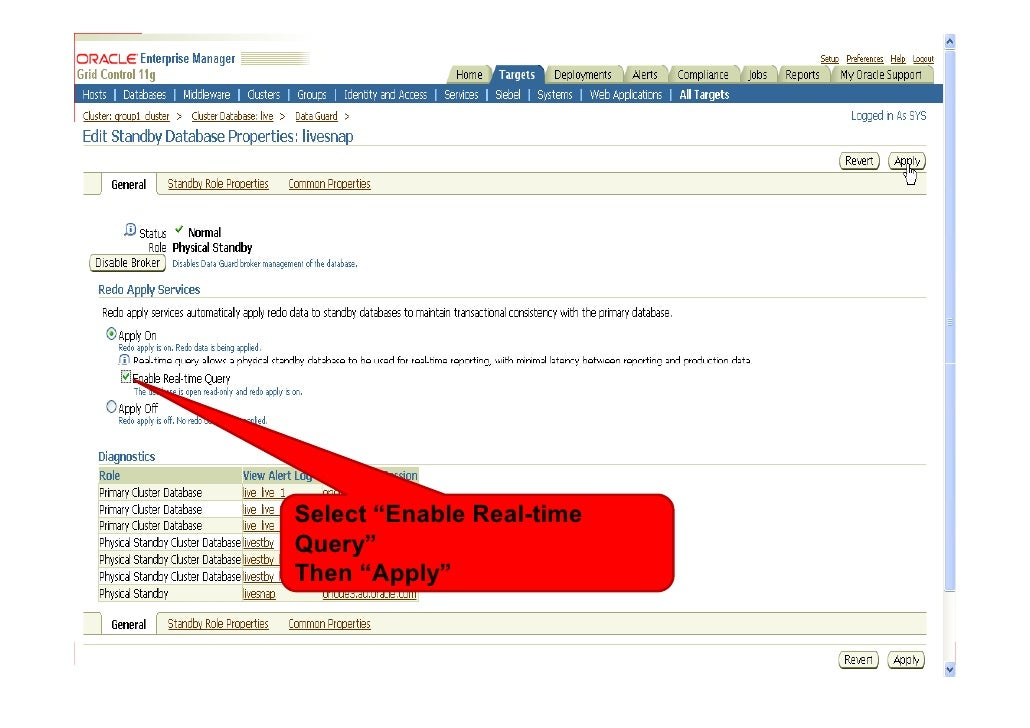 """Select """"Enable Real-time Query"""" Then """"Apply"""""""