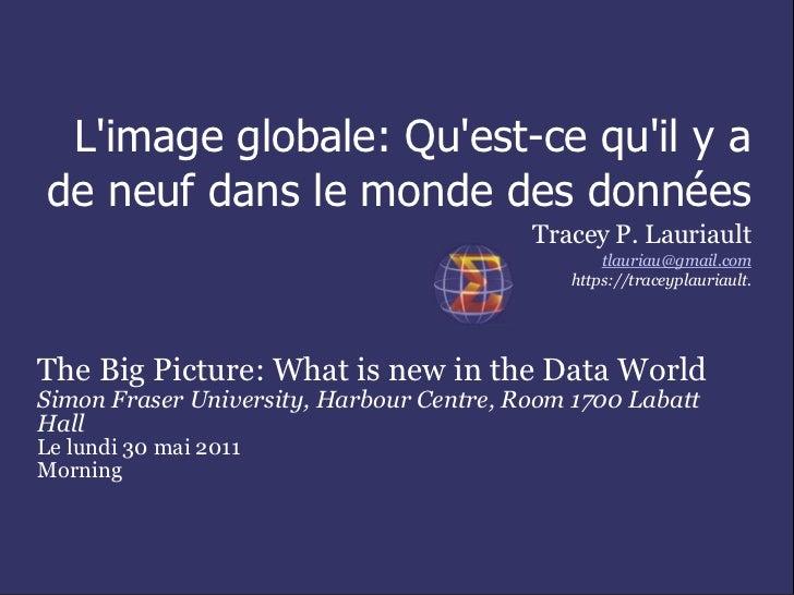 Limage globale: Quest-ce quil y ade neuf dans le monde des données                                          Tracey P. Laur...