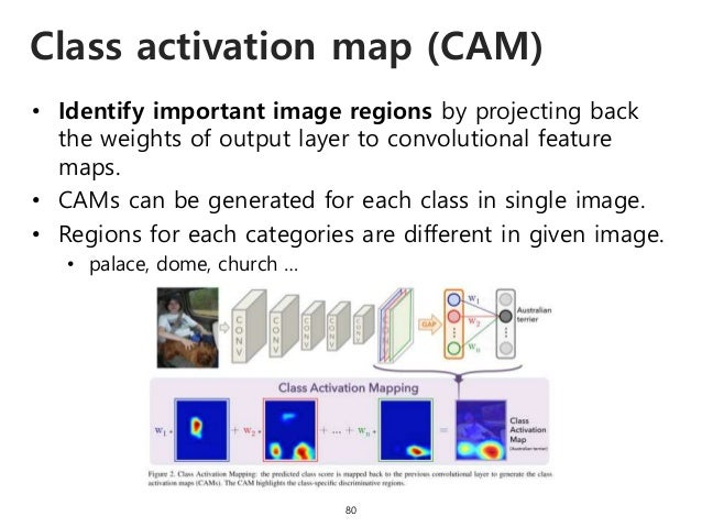 Class activation map (CAM) 80 • Identify important image regions by projecting back the weights of output layer to convolu...
