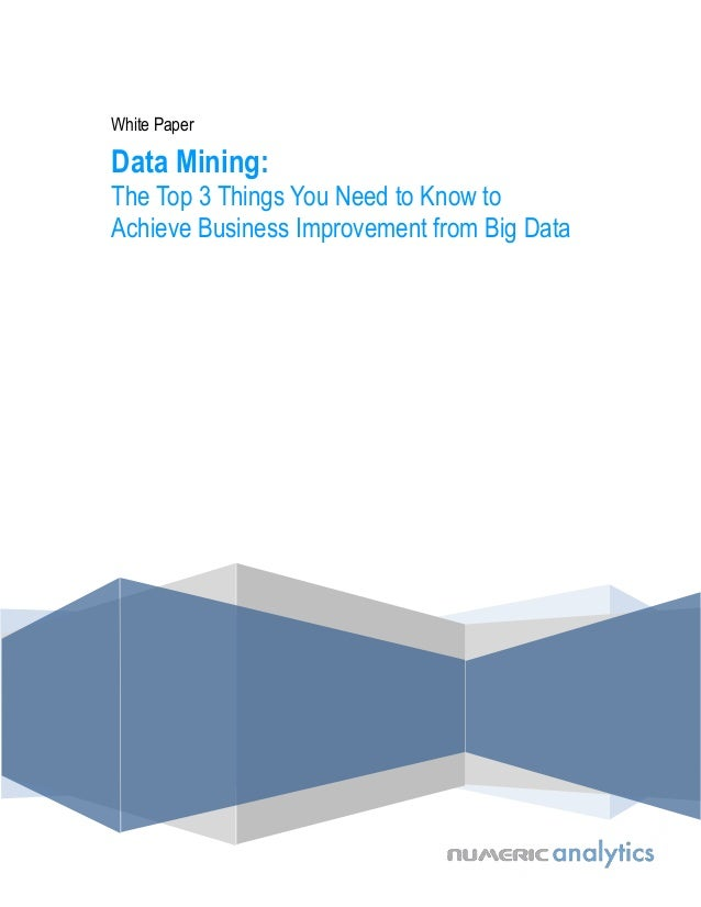 White Paper  Data Mining: The Top 3 Things You Need to Know to Achieve Business Improvement from Big Data