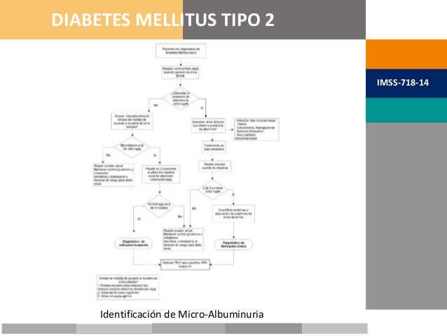 METAS TERAPÉUTICAS DIABETES MELLITUS TIPO 2 IMSS-718-14 Identificación de Micro-Albuminuria