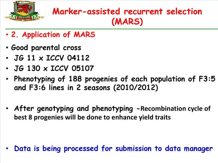 Marker-assisted recurrent selection                            (MARS)• 2. Application of MARS•   Good parental cross•    J...