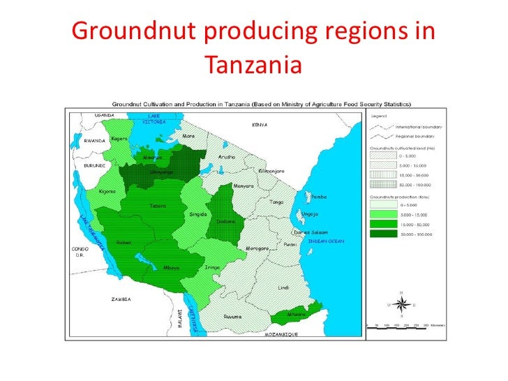 Groundnut producing regions in          Tanzania