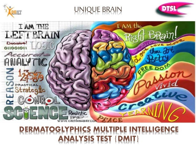 an analysis of the intelligence tests Intelligence tests are useful tools for various purposes an alternative conception of intelligence is that cognitive capacities within individuals are a manifestation of a general component, or general intelligence factor, as well as cognitive capacity specific to.