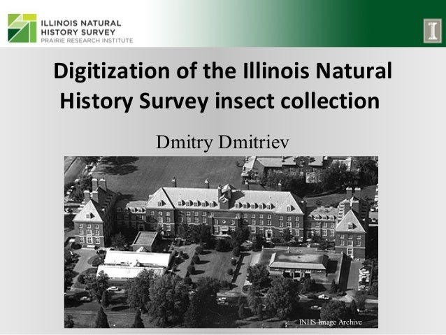 Digitization of the Illinois Natural History Survey insect collection Dmitry Dmitriev  INHS Image Archive