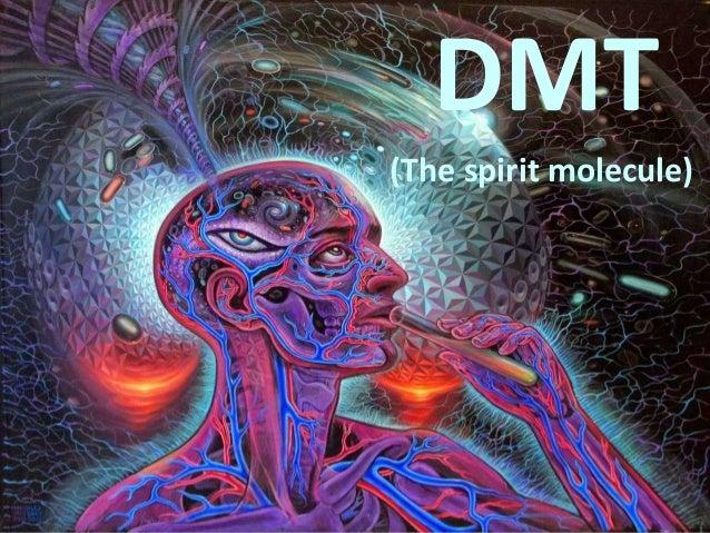 DMT (The spirit molecule)