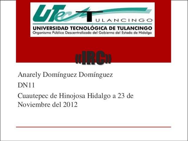 «IRC»Anarely Domínguez DomínguezDN11Cuautepec de Hinojosa Hidalgo a 23 deNoviembre del 2012
