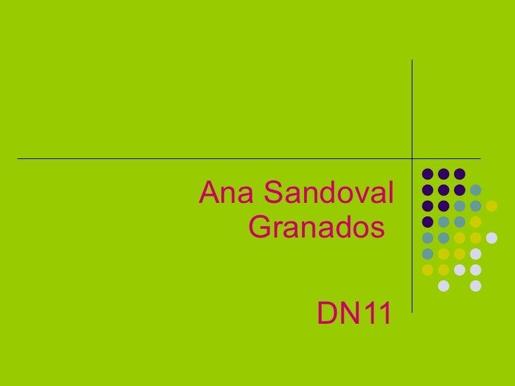 Ana Sandoval Granados  DN11