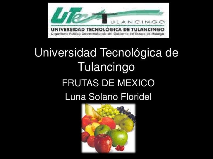 Universidad Tecnológica de        Tulancingo    FRUTAS DE MEXICO     Luna Solano Floridel