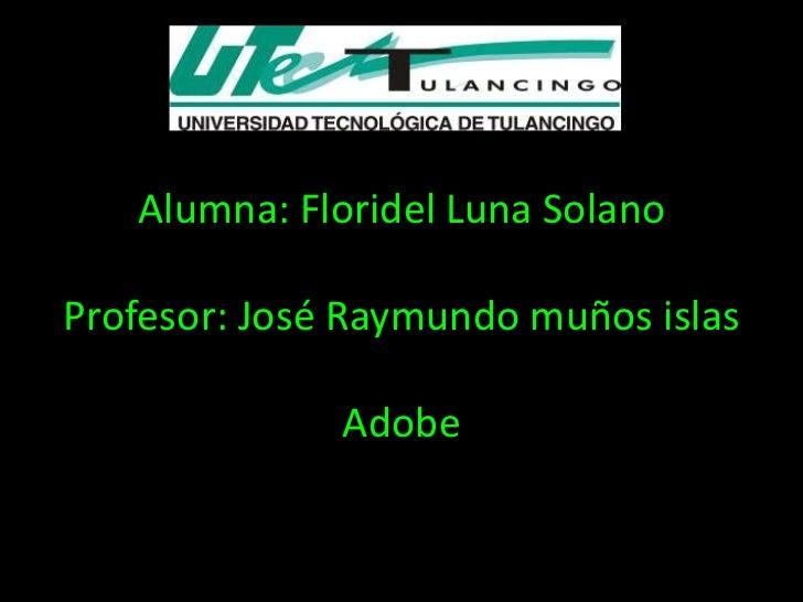Alumna: Floridel Luna SolanoProfesor: José Raymundo muños islas              Adobe