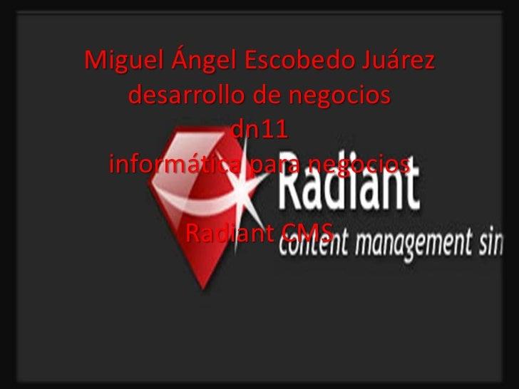 Miguel Ángel Escobedo Juárez   desarrollo de negocios            dn11 informática para negocios        Radiant CMS