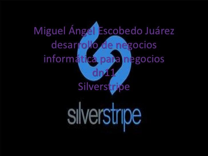 Miguel Ángel Escobedo Juárez   desarrollo de negocios informática para negocios            dn11        Silverstripe