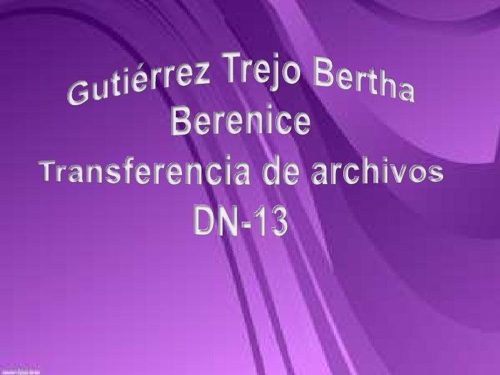Gutiérrez Trejo Bertha BereniceTransferencia de archivos DN-13<br />