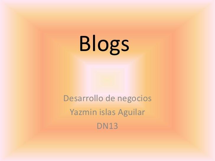 BlogsDesarrollo de negocios Yazmin islas Aguilar        DN13