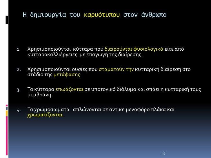 ΘΕΜΑ:2 2003<br />Από τι αποτελείται το νουκλεόσωμα και ποιος είναι ο ρόλος του; Μονάδες10<br />