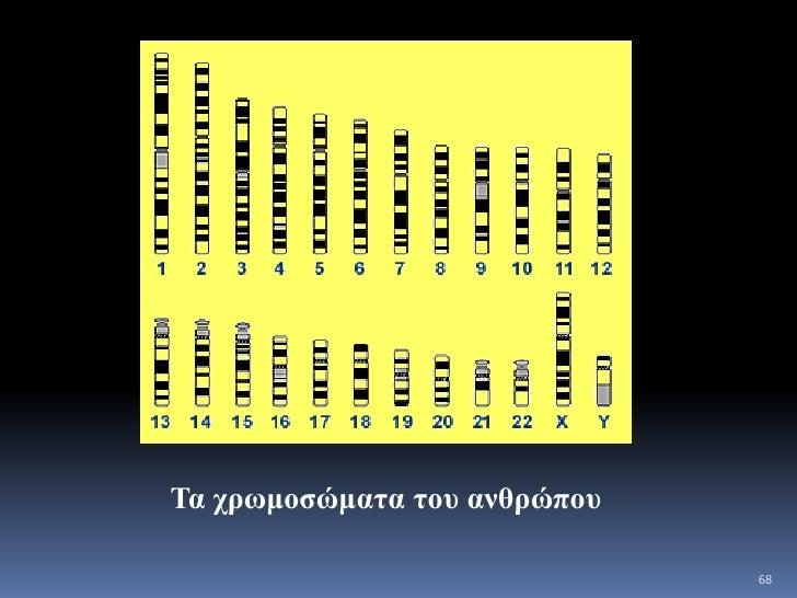 Γνωρίζετε ότι….<br />Το 97% του DNA στο ανθρώπινο γονιδίωμα έχει άγνωστη λειτουργία.<br />12000 γράμματα του DNA αποκωδικο...