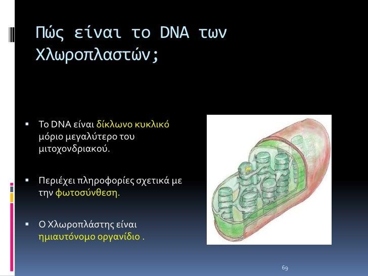 Η δημιουργία του καρυότυπου στον άνθρωπο<br />Χρησιμοποιούνται  κύτταρα που διαιρούνται φυσιολογικάείτε από κυτταροκαλλιέρ...