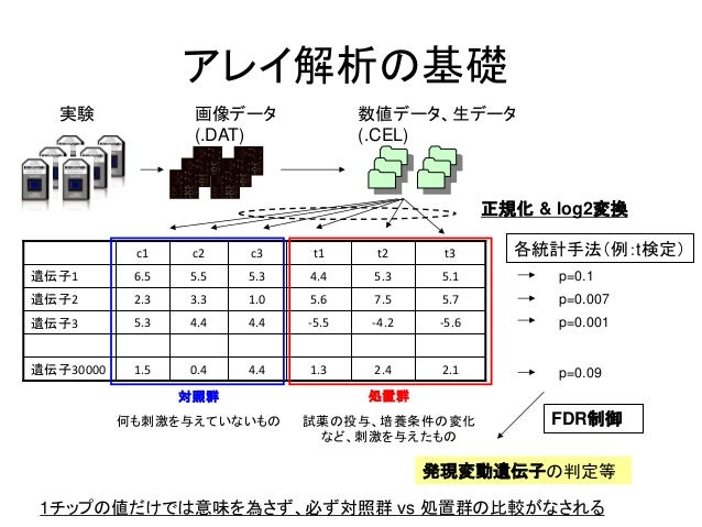 アレイ解析の基礎-5.6-4.2-5.54.44.45.3遺伝子35.15.34.45.35.56.5遺伝子12.12.41.34.40.41.5遺伝子300005.77.55.61.03.32.3遺伝子2t3t2t1c3c2c11チップの値だ...