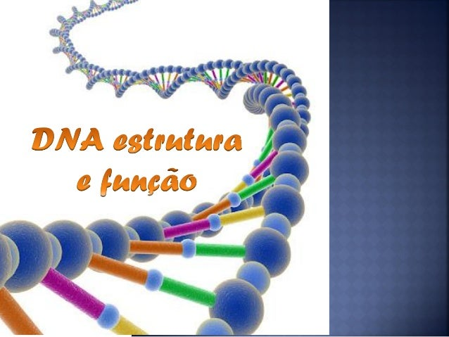  Onde se encontra armazenada a informação genética?  O que são genes?  Que relação existe entre os genes e as proteínas...
