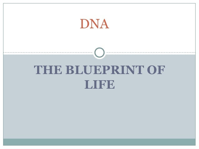 Dnapptx the blueprint of life dna malvernweather