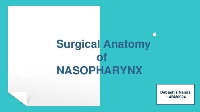 Surgical Anatomy of NASOPHARYNX Debashis Nanda 14BM0024 💣