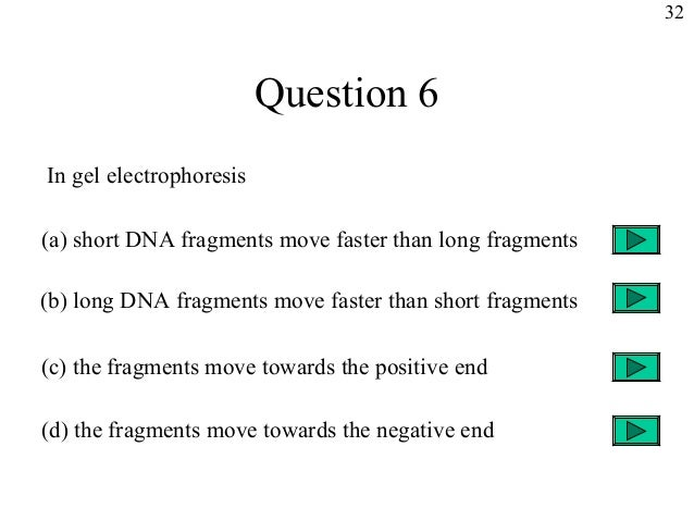 an analysis of dna electrophoresis in molecular biology Biology 382 - techniques in molecular biology - syllabus 2 isolation, followed by restriction enzyme analysis with agarose gel electrophoresis, dna sequencing, and sequence analysis to evaluate success of the procedure.