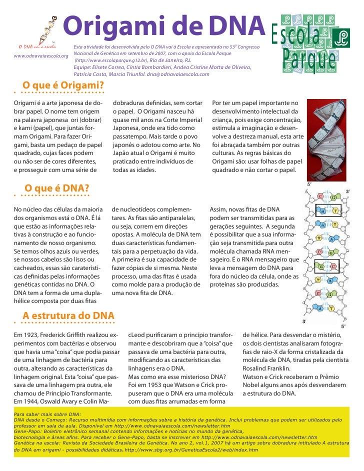 Origami de DNA                       Esta atividade foi desenvolvida pelo O DNA vai à Escola e apresentada no 530 Congress...