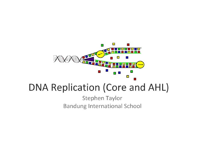 DNA Replication (Core and AHL)
