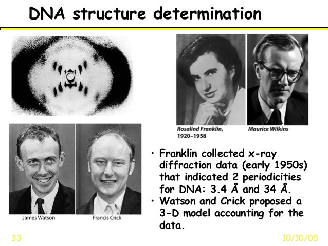 DNA structure determination10/10/0533• Franklin collected x-raydiffraction data (early 1950s)that indicated 2 periodicitie...