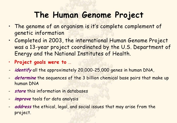goal of human genome project The human genome project, goals of hgp, construction of genetic map the human genome project, goals of hgp, construction of genetic map skip navigation.