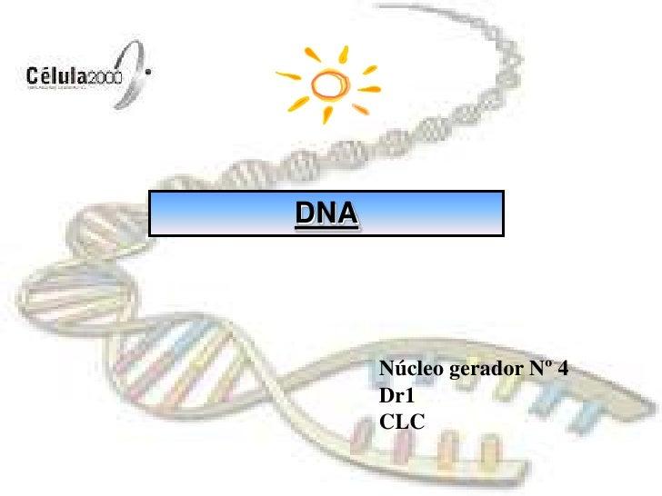 DNA<br />Núcleo gerador Nº 4<br />Dr1<br />CLC<br />