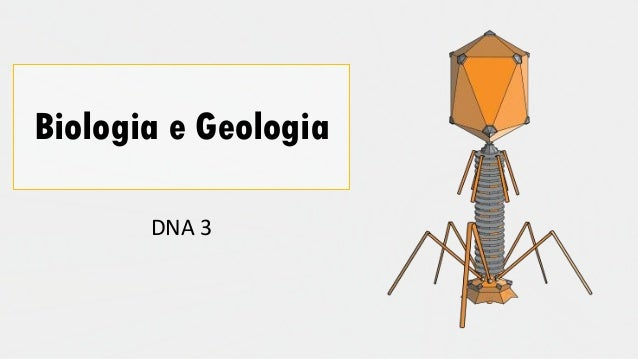 Biologia e Geologia DNA 3