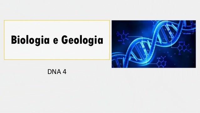 Biologia e Geologia DNA 4