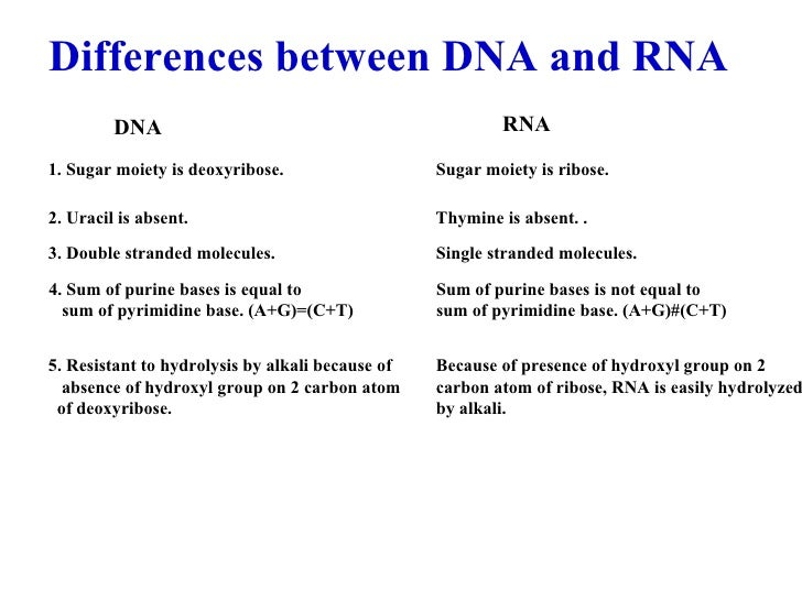 a comparison of the similarities and differences between dna and rna A comparison of the entire genome, however, indicates that segments of dna have also been deleted, duplicated over and over, or inserted from one part of the genome into another when these differences are counted, there is an additional 4 to 5% distinction between the human and chimpanzee genomes.