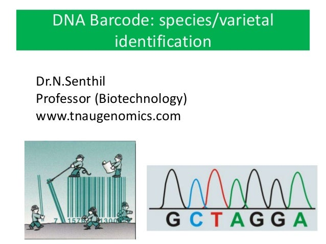 Use of DNA barcoding and its role in the plant species
