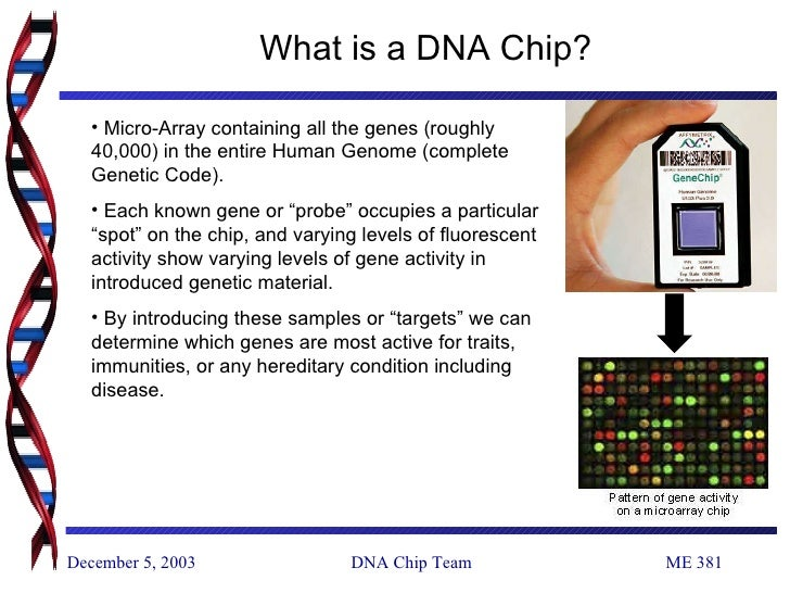 Dna Chip on Introducing Arrays