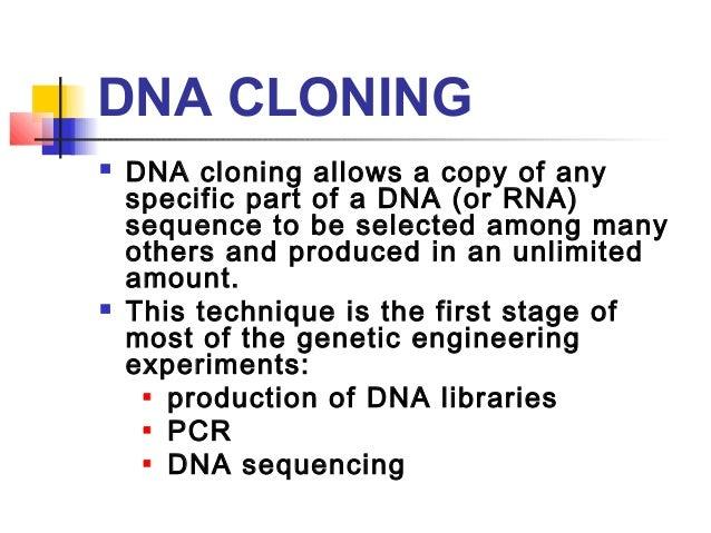 dna cloning