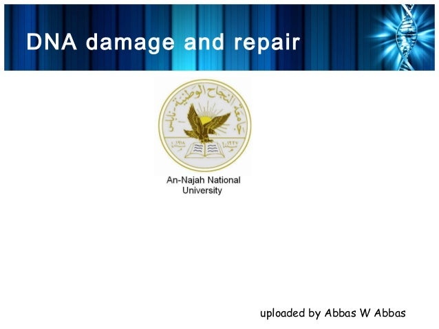 DNA damage and repair                  uploaded by Abbas W Abbas