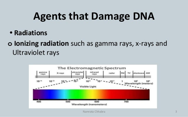 Dna damage, repair and clinical significance Slide 3