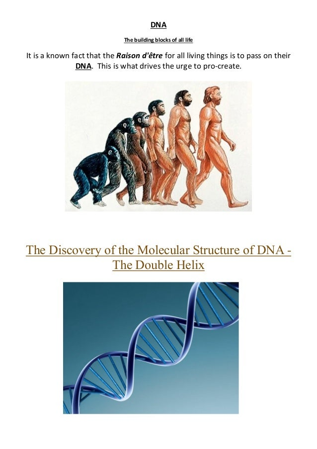 DNA The building blocks of all life It is a known fact that the Raison d'être for all living things is to pass on their DN...