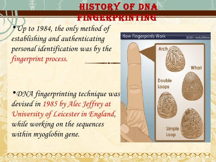 an analysis of the dna fingerprinting as an method of identification in england Dna technology has improved methods of identification by replacing the use of fingerprints although fingerprinting is still used, dna fingerprinting is being used more and more dna fingerprinting dates back to 1985 when it was first developed in england by sir alec jeffreys, and it has been.