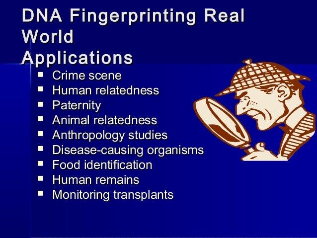 DNA Fingerprinting: Definition, Techniques and Application of DNA Fingerprinting